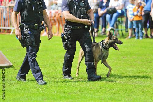 Fotografía  démonstration de chien policier de la brigade canine belge