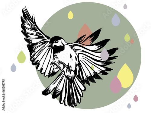 ilustracja-ptaka