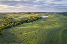 Green Soybean Fields In Missouri Aerial View