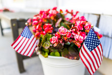 Patriotic Flower Pot With Amer...