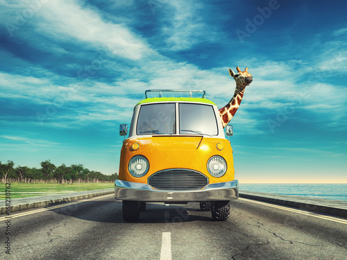 Giraffe driving a car