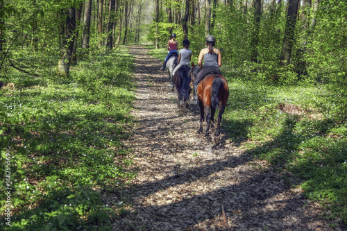 Photo  Young girls riding on horseback through the forest