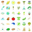 Biology in nature icons set, cartoon style