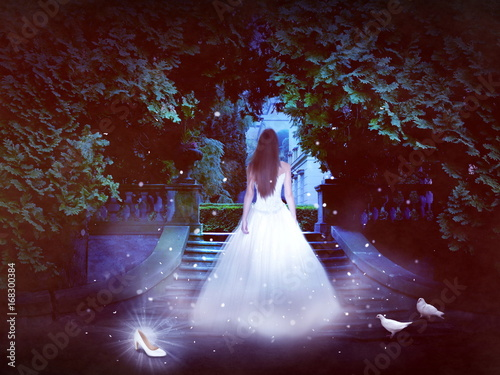 Foto cinderella in night
