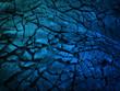 canvas print picture  Dark blue black slate background.