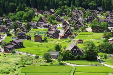 Shirakawago in Hida Japan, Gassho-Zukuri Village 白川郷 飛騨の夏