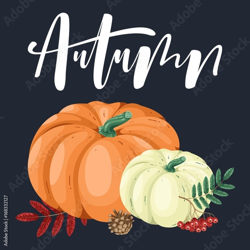 Hand drawn illustration with pumpkin and lettering. Fototapet
