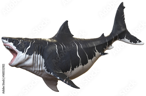 Cuadros en Lienzo 3D rendering of Megalodon isolated on a white background..