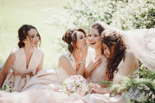 Beautiful Bride And Bridesmaids Sit On The Lawn