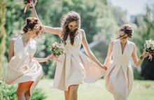 Elegant Bridesmaids Walk On The Green Lawn