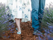 canvas print picture - the couple in lavender field, feet