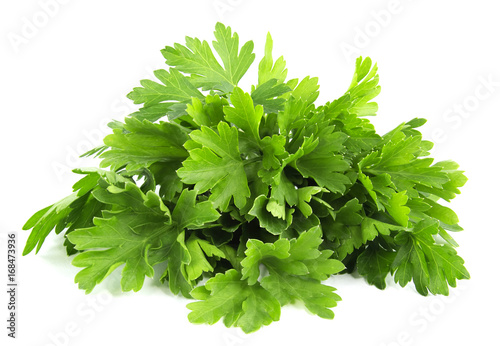Fotografie, Obraz parsley bunch isolated on white background