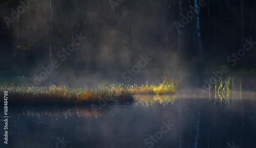 Slika na platnu Jezioro o poranku