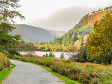 Glendalough Valley, Wicklow Mountains National Park, Ireland