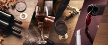 Wine Tasting And Winemaking