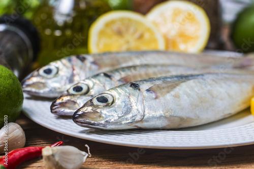 Fényképezés  Round scad fish