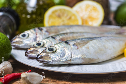 Fotografija  Round scad fish