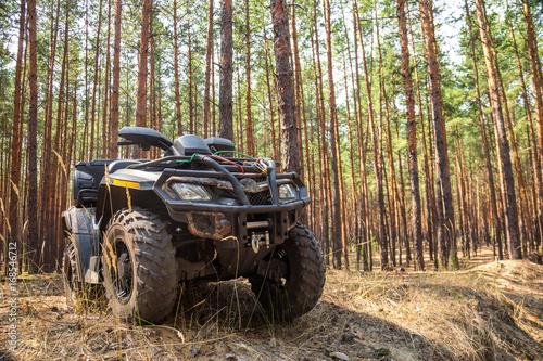 Fototapety, obrazy: ATV Quadbike in a pine forest