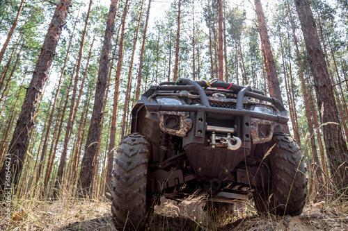 Fototapety, obrazy: ATV Quadbike in a pine forest. Summer time.