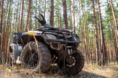 Fototapety, obrazy: ATV Quadbike in a pine forest. Summer time.