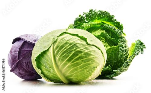 Three fresh organic cabbage heads isolated on white