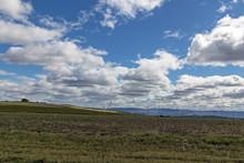 Winter Grassland Against Blue ...