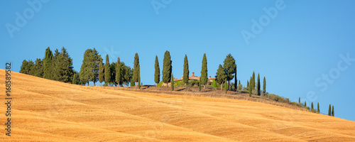 Foto op Aluminium Blauw Beautiful typical panorama landscape of Val d'Orcia in Tuscany with a row of cypress trees in summer, Val d'Orcia, Tuscany, Italy
