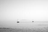 Sailing boat wallpaper - black and white, sea, summer - 168605397