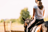 Fototapeta Horses - Picture of young pretty girl riding horse