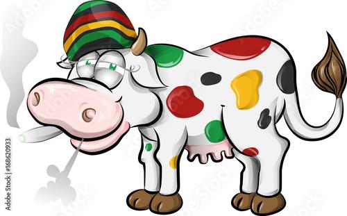 Photo  jamaican cow cartoon