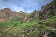 Cows graze on slopes of Alpine mountains. Beautiful georgian landscape