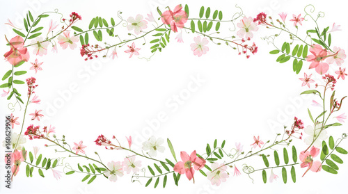 Wall Murals Floral Floral frame