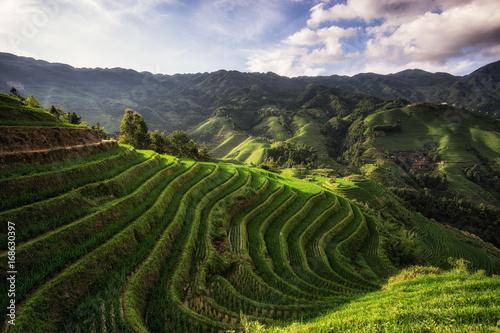 Fotobehang Rijstvelden Longi rice terrace
