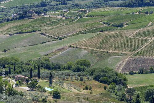 In de dag Khaki Tuscan countryside, Italy