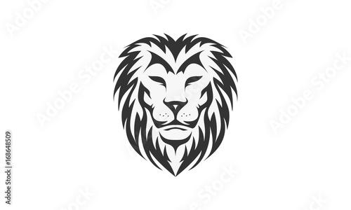 Fototapety, obrazy: Lion logo vector