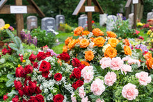 Flowers On A Grave At The Ceme...