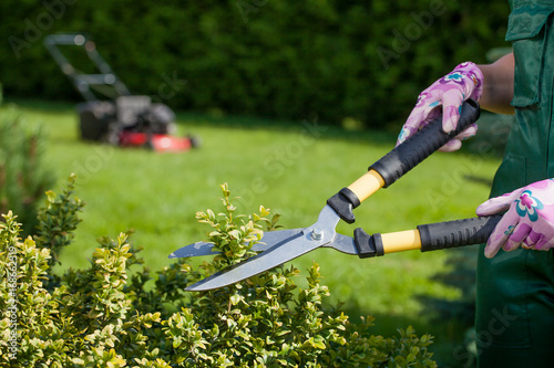 Young woman working in the garden.