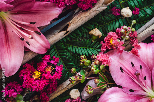 Photo  Lillies