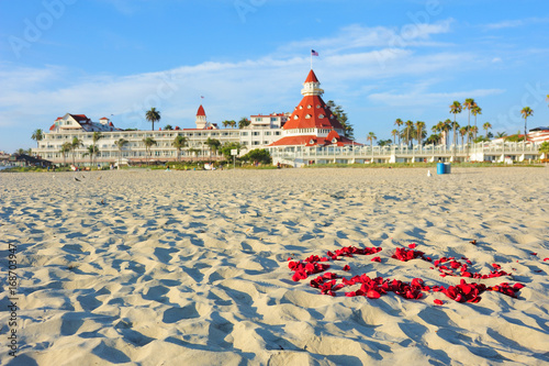 View from the beach of the historic Hotel del Coronado,San Diego, California Wallpaper Mural