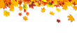 canvas print picture - autumn leaves background