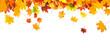Leinwanddruck Bild - autumn leaves background