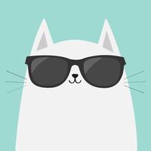 White Cat Wearing Sunglasses Eyeglasses. Black Lenses. Cute Cartoon Funny Character. Kitten In Eyeglasses. Fashion Animal. Blue Background. Isolated. Flat Design