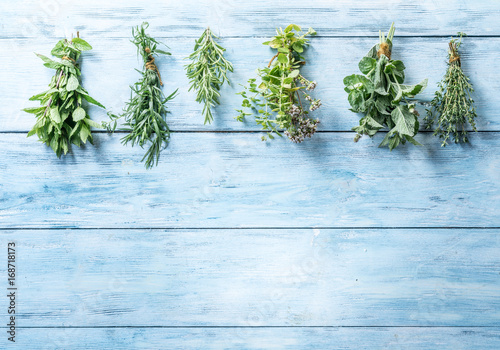 Photo  Fresh herbs on the blue wooden background.