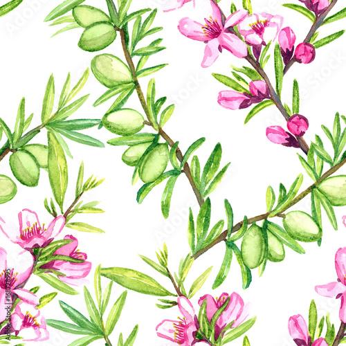 migdal-galaz-z-kwiatami-i-dokretkami-bezszwowy-deseniowy-projekt-reka-malujaca-akwareli-ilustracja-bialy-tlo