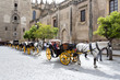 Carriages of Horses stationary in front of Seville Cathedral