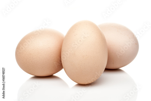 chicken eggs standing isolated on white background