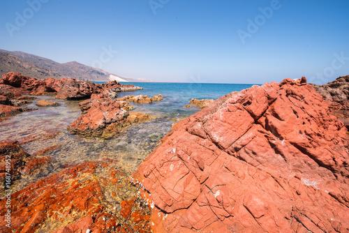 Papiers peints Corail Socotra Island, Yemen. UNESCO World Heritage