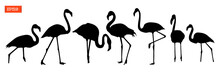 Set Of Silhouettes Of Flamingo Birds