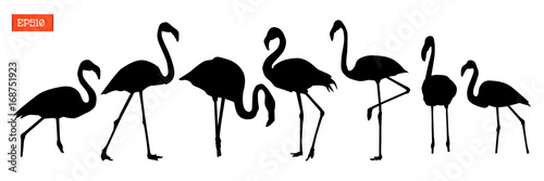 Fotografie, Obraz Set of silhouettes of flamingo birds