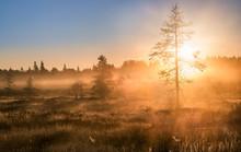 Scenic Sunrise With Foggy Atmo...